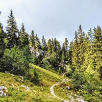 Stage trail réserve naturelle